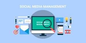Jasa Social Media Management Profesional